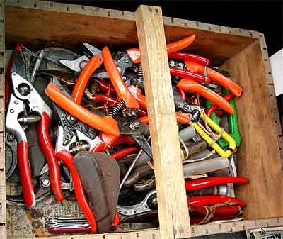 2007-09-23-lesescheren.jpg