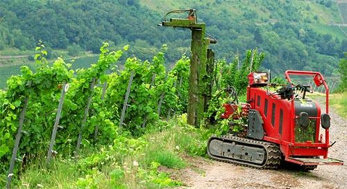 2011-07-30-laubschneider.jpg