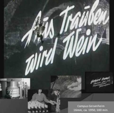 CoverAus_Trauben_wird_Wein