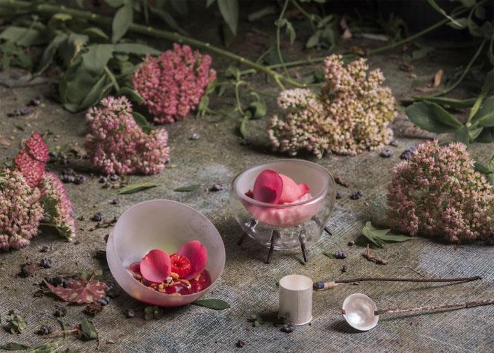 2017-05-04 Tanja Grandits' Himbeer-Granola Dessert
